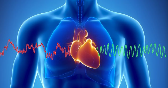 Male Heart Uncovered